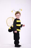 Пчеленок,Шмель